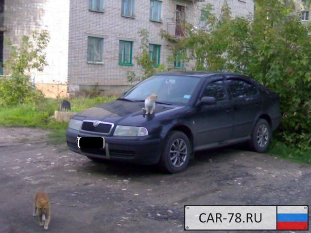 Skoda Octavia Tour Новгородская область